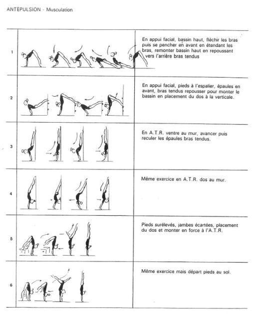 gymnastique exercices ant pulsion. Black Bedroom Furniture Sets. Home Design Ideas